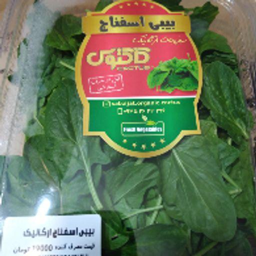 سبزی تازه - بی بی اسفناج