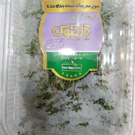 سبزی تازه - آویشن