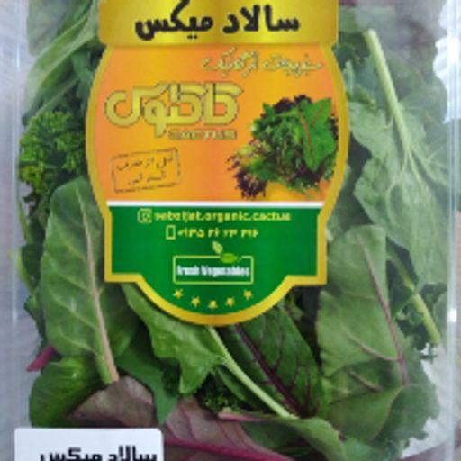 سبزی میکس سالادی