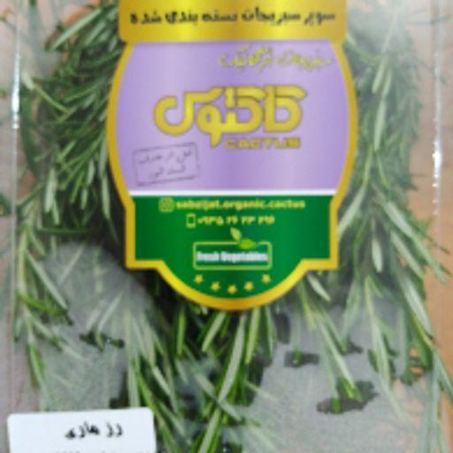 سبزی تازه - رزماری