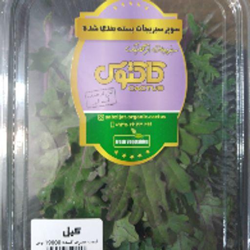 سبزی تازه - کیل